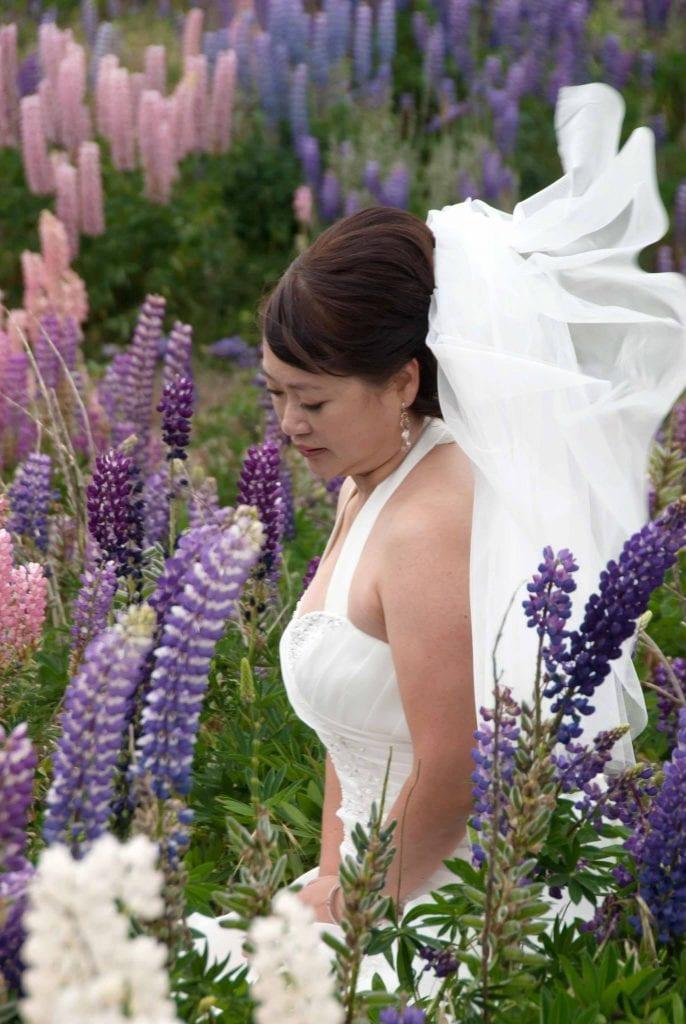 Lupin wedding at Lake Tekapo, New Zealand