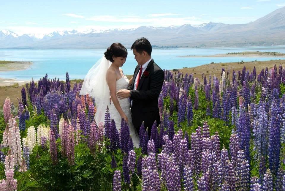 Lupins wedding at Lake Tekapo, Church of the Good Shepherd