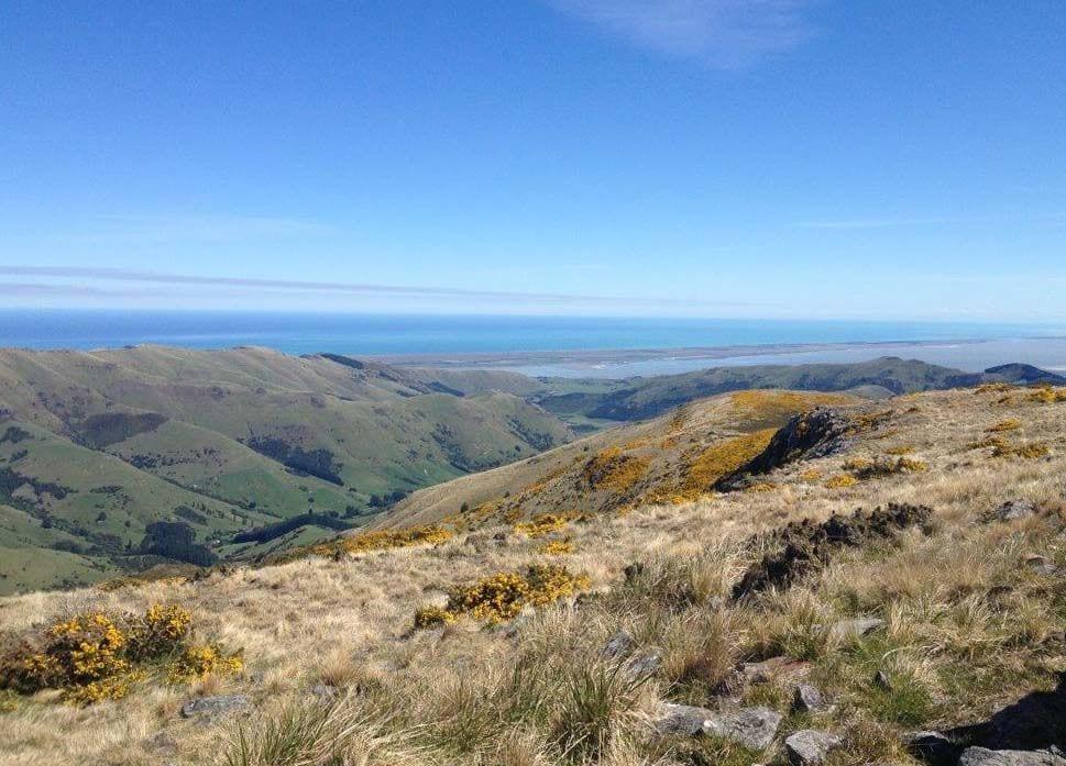 Mt Herbet Heli Wedding NZ